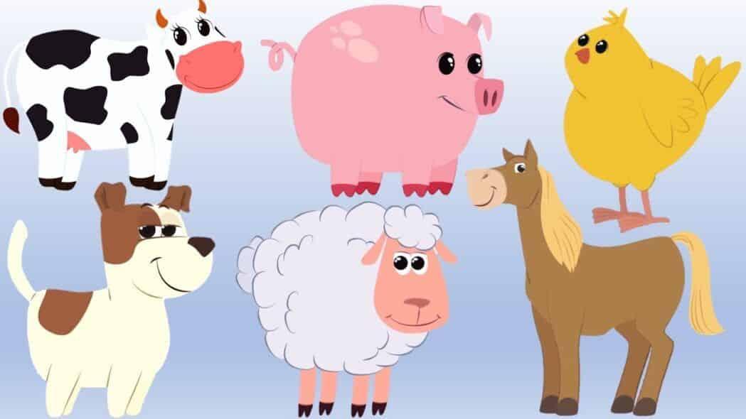 Actividad para identificar animales
